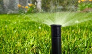 sprinkler maintenance plan